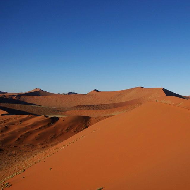 Safari Namibia: The dunes of Sossusvlei