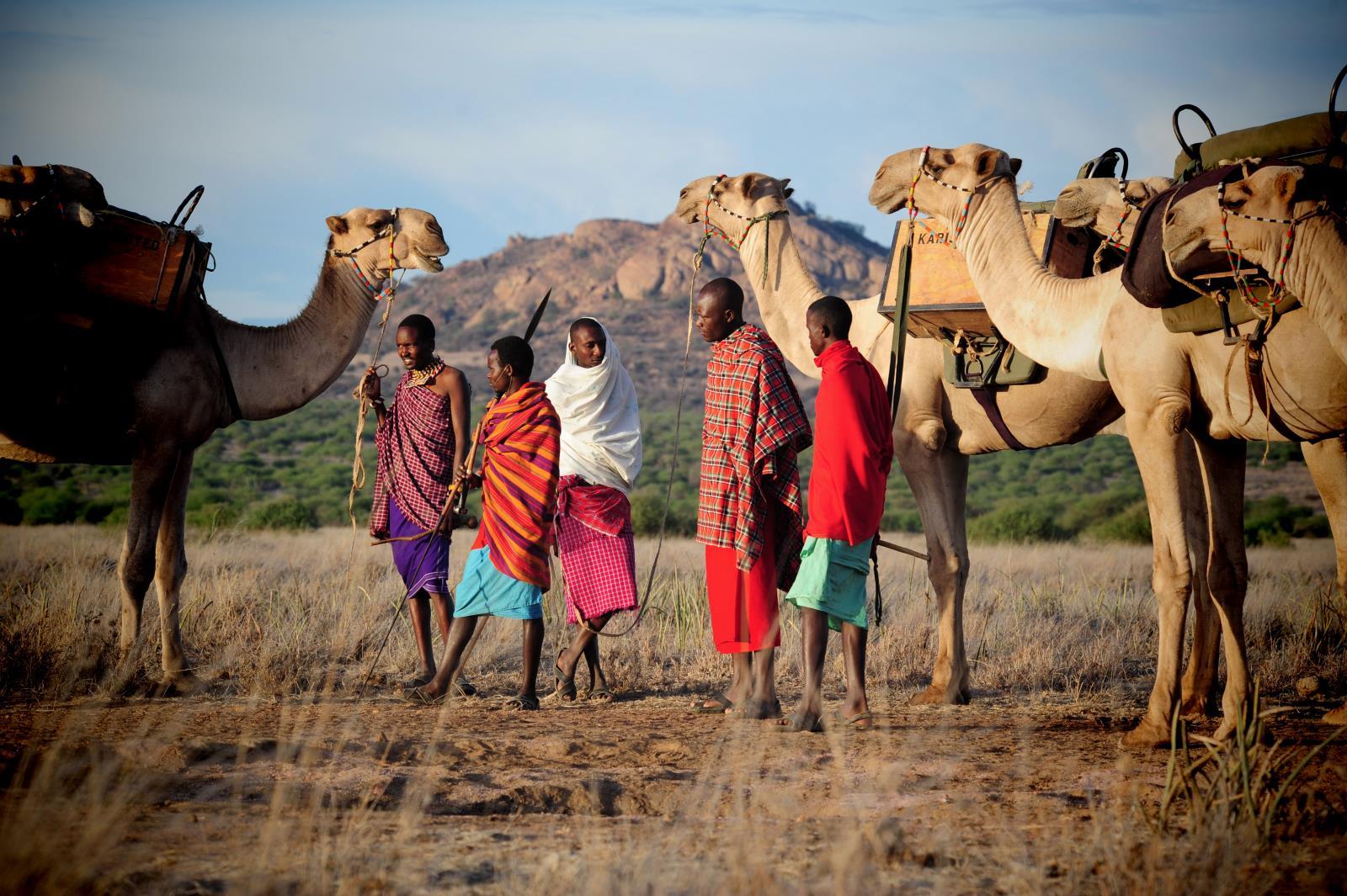Camel Safari through Laikipia, Kenya with Masai and Samburu Guides