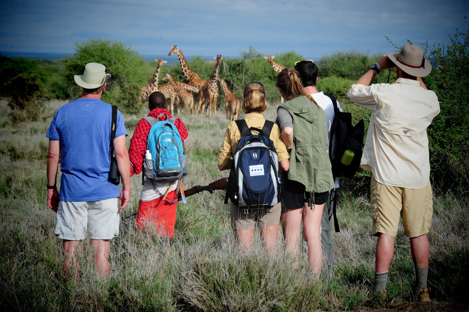 Walking Safari through Laikipia, Kenya