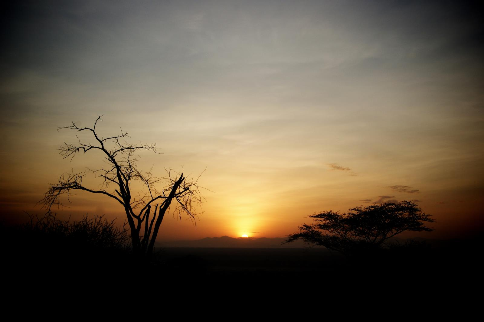 Sundowner Safari through Samburu, Kenya