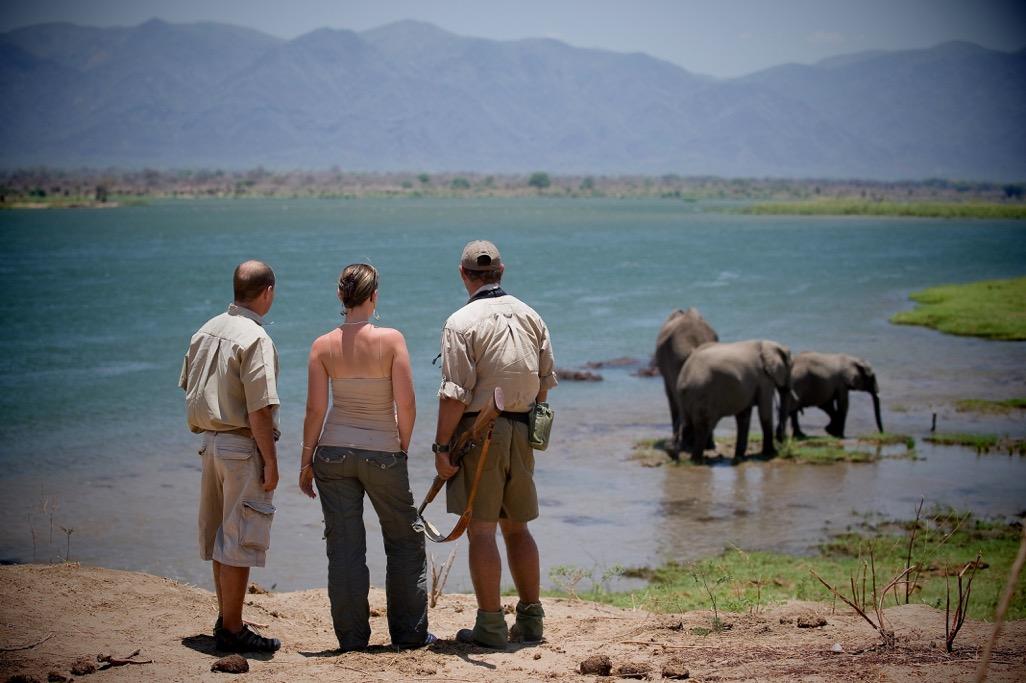 Walking Safari at Ruckomechi Camp, Mana Pools, Zimbabwe