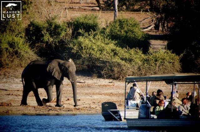 Bootssafari Chobe River Front Botswana