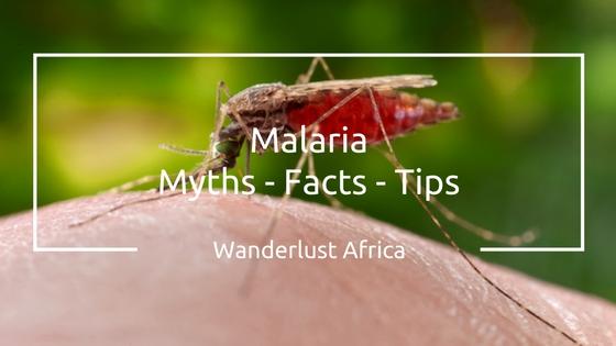Malaria Tips