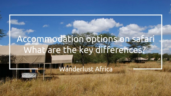 Accommodation options on Safari