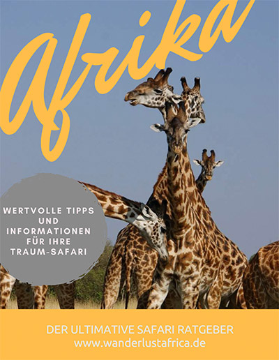 Self-drive tips Africa: The ultimate guide - Wanderlust Africa