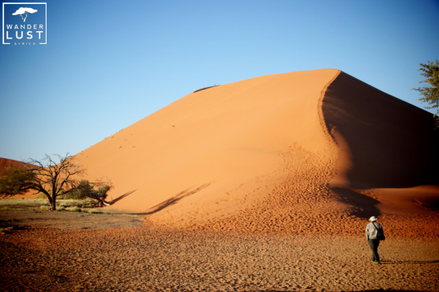 The popular Dune 45 in Namibia - worth getting up for early