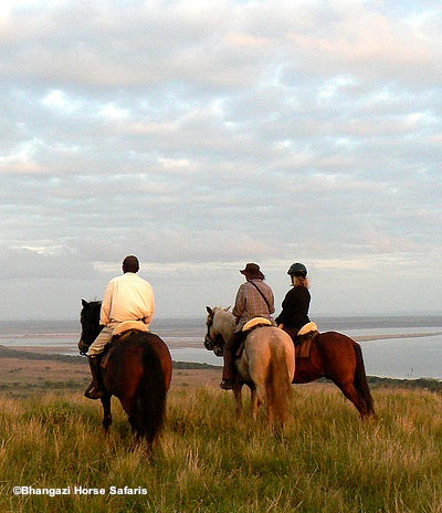 Horse Safaris in St Lucia
